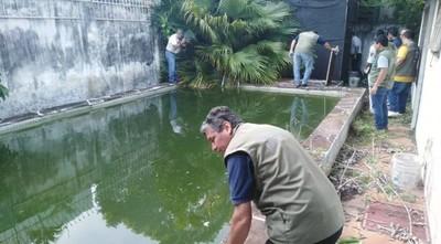 """La """"mansión de los mosquitos"""" es intervenida por la Municipalidad"""
