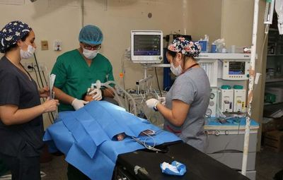 Cirugías reconstructivas en hospital encarnaceno