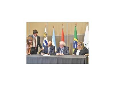 Mercosur  deberá notificar  en 24 horas los brotes epidemiológicos