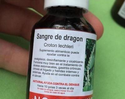 HOY / Creencia popular vs evidencia científica: Sangre de Dragón, otra alternativa contra el dengue