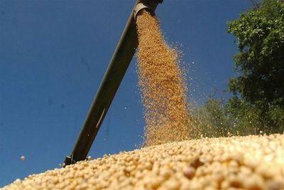 Molienda de soja fue 30 puntos menos en enero