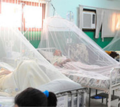 """Epidemia de dengue """"fue mayor a lo esperado"""""""