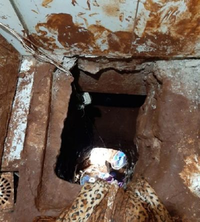 Pericia confirma que fuga de reos se dio a través de túnel