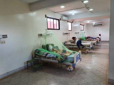CIRCULACIÓN DEL SEROTIPO 2 DEL DENGUE PODRÍA AGRAVAR EPIDEMIA
