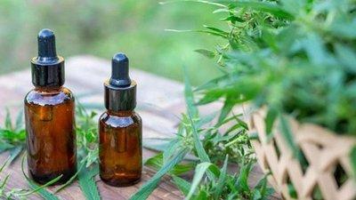 12 empresas tienen luz verde para la producción de cannabis medicinal