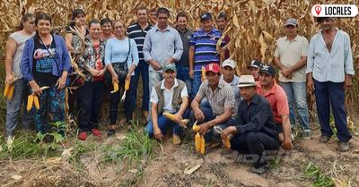 En Itapúa, brindan asistencia técnica en las fincas de los productores