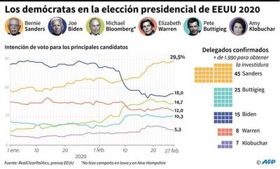 ¿Quiénes son los principales candidatos en la interna demócrata?