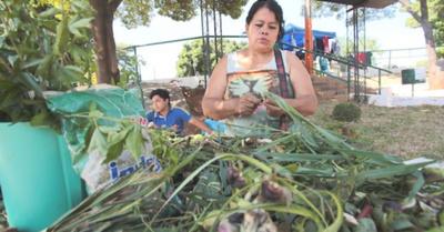 """Pionera en yuyos festeja a lo grande """"Día del tereré"""""""