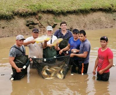 Yacyretá fomenta la piscicultura desde la estación de San Cosme y San Damián