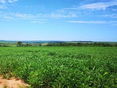 Argentina avisa agricultores que subirá tributo a exportación de soja
