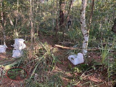 Caen 461 kilos de cocaína en la zona de cerro Guazú, en Capitan Bado
