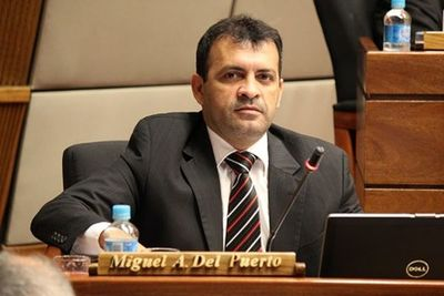 Diputado acusa que sectores del oficialismo dinamitan paz colorada: denuncia despidos en entes