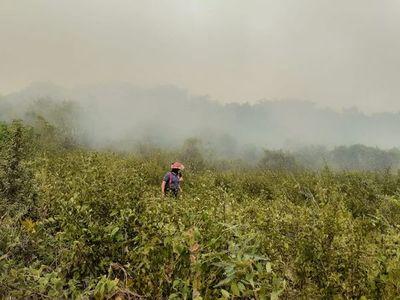 Clausuran eco vía a causa de grave incendio en la zona