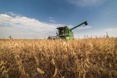 El retraso de la cosecha de soja derivó en la caída de los envíos