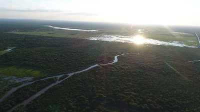 Lluvias traen alivio a productores mientras el Pilcomayo registra leve repunte