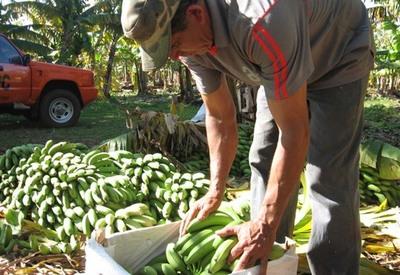 BM otorgó a Paraguay un crédito de US$ 300 millones para la producción agropecuaria