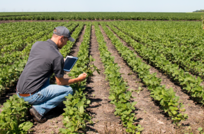 USD 80 millones del BID para mejora en los servicios agropecuarios