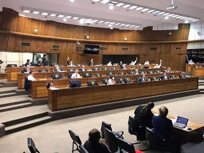 Media sanción en Senado para exoneración de cuotas de ANDE, ESSAP y COPACO