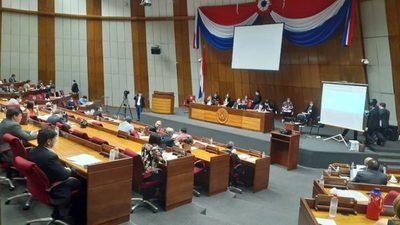 Diputados sancionan exoneración por tres meses del pago de energía, agua y Copaco