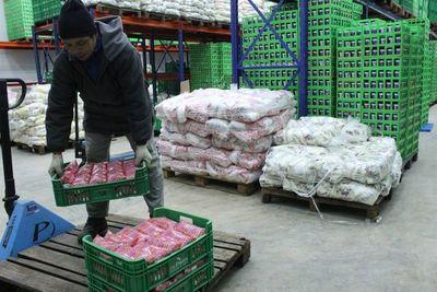 Sector lácteo garantiza la producción y comercialización en el mercado