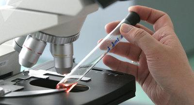 Coronavirus: cifra de infectados llega a 64