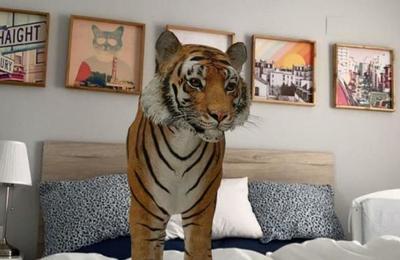 Así puedes activar la realidad aumentada de Google y ver animales en 3D en tu casa