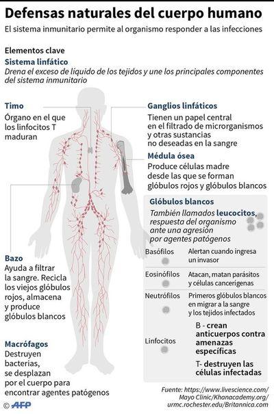 Los síntomas son variables, pero hay algunos característicos del covid-19
