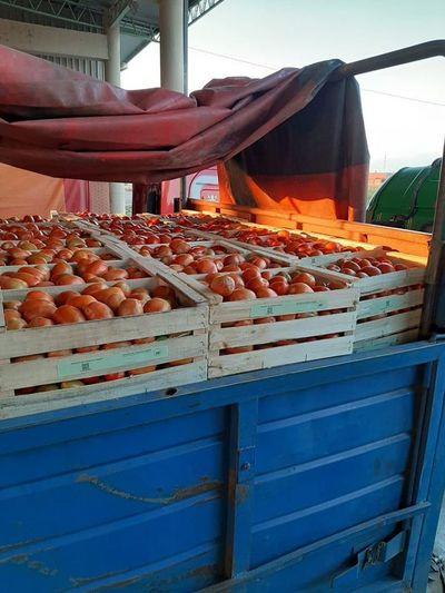 Ingreso de hortalizas y frutas garantiza el abastecimiento nacional, afirman desde el MAG