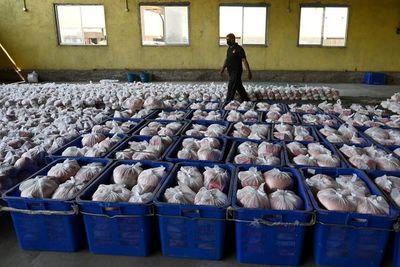 ONU advierte que coronavirus puede causar crisis alimentaria mundial