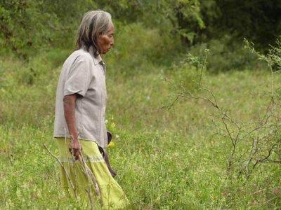 Indígenas también toman medidas especiales contra el Covid-19