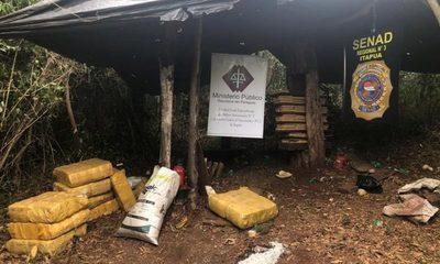 SENAD incauta 418 kilos de marihuana en María Auxiliadora, Itapúa – Diario TNPRESS