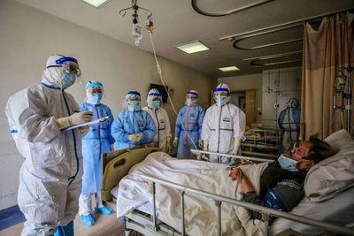Probarán células madre para vencer al nuevo coronavirus