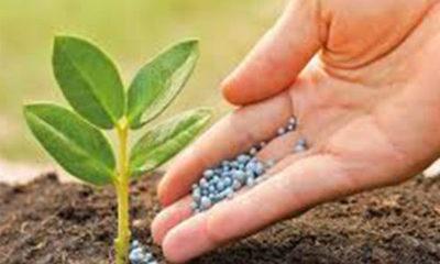 » Maximizar la sustentabilidad