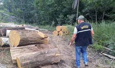 Inician investigación interna sobre desmonte en el Parque Nacional San Luis