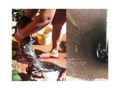 Perrita cayó a un pozo y fue rescatada por bomberos