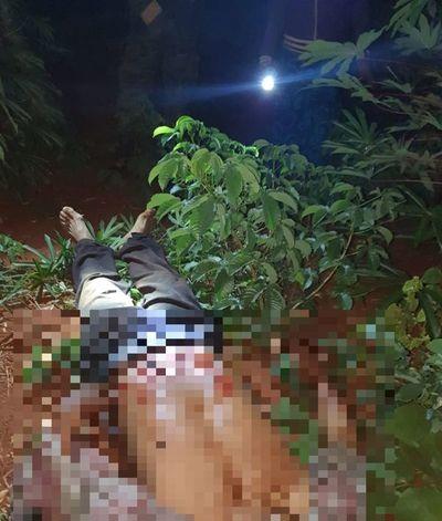 Reportan triple homicidio en Amambay