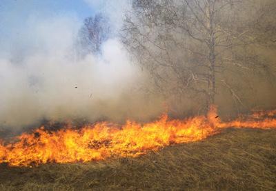 Detectan nuevos focos de incendio en el Chaco