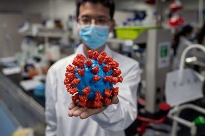 Nuevo coronavirus es de origen natural, según la OMS