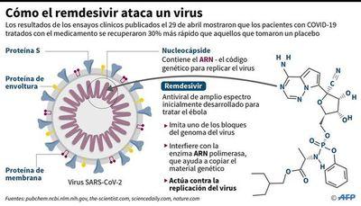 EE.UU. aprueba uso de  antiviral  remdesivir