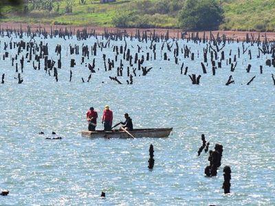 Falta de lluvia afecta la producción  y  reduciría el embalse del Acaray