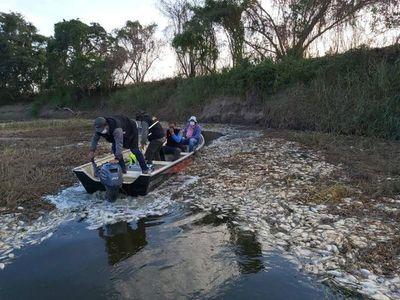 Mortandad de peces en Villa Hayes sería por falta de oxigenación