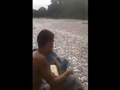 Chaco: Registran mortandad de peces en el río Montelindo
