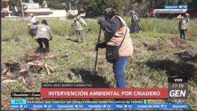 HOY / La Municipalidad de Asunción realiza intervenciones en propiedades abandonadas con criaderos de mosquitos en el barrio Carmelitas