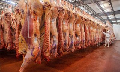 » Pandemia generó caída de 51% de exportaciones paraguayas en abril