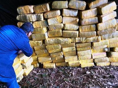 Asestan fuerte golpe a marihuaneros • Luque Noticias