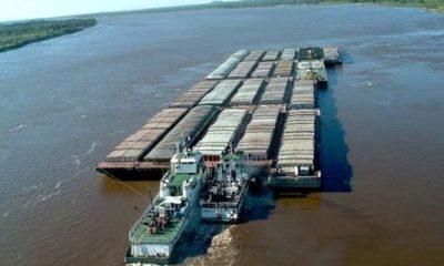 » Se inició la exportación de 200 mil toneladas de soja por el río Paraná