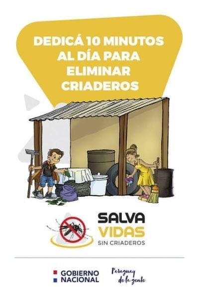 Si criaderos no se eliminan, el Aedes aegypti seguirá vigente