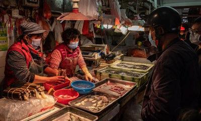 Wuhan prohíbe comer y criar animales salvajes
