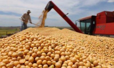 » Se complica envío de soja desde los depósitos portuarios