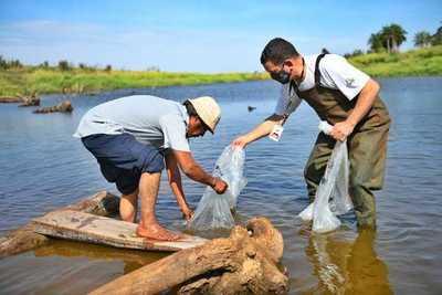 Itaipú entregó más de 900 kg de peces a comunidades indígenas de Alto Paraná